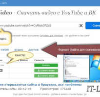 Coub youtube видео
