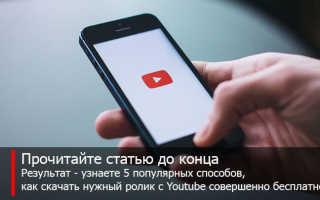 Видеоурок как скачать видео